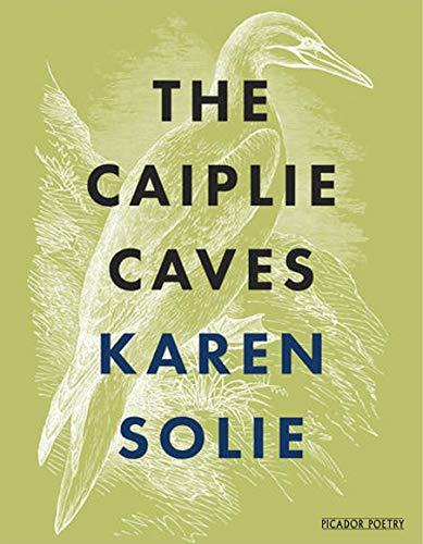 9781529005325: Caiplie Caves