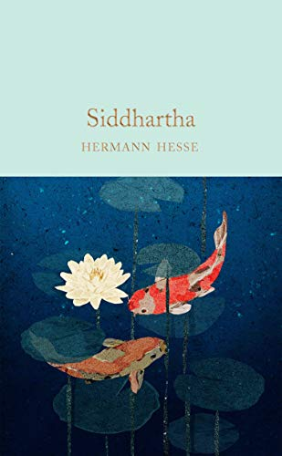 9781529024043: Siddhartha (Macmillan Collector's Library)