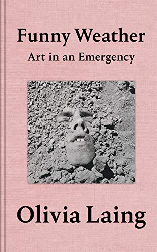 9781529027648: Funny weather: art in an emergency