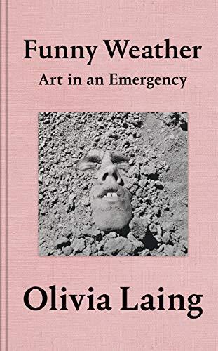 9781529027648: Funny Weather: Art in an Emergency