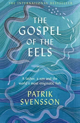 9781529030686: The Gospel of the Eels: A Father, a Son and the World's Most Enigmatic Fish