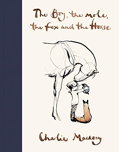 9781529105100: The Boy, The Mole, The Fox and The Horse