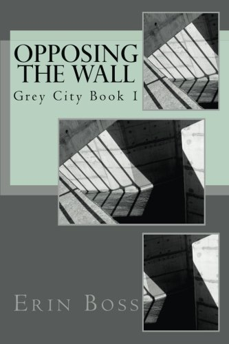 9781530122356: Grey City: Opposing the Wall (Volume 1)