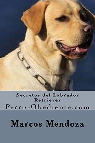 9781530683420: Secretos del Labrador Retriever: Perro-Obediente.com