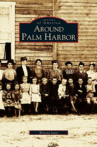 9781531611934: Around Palm Harbor