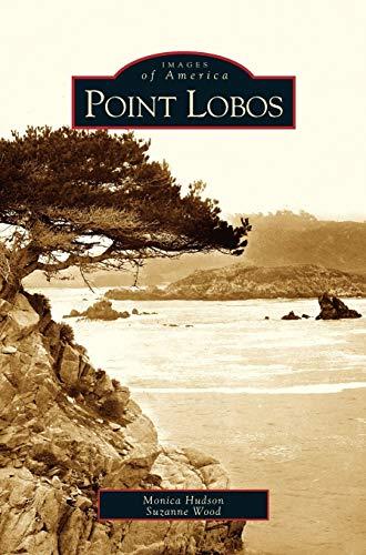 9781531615598: Point Lobos