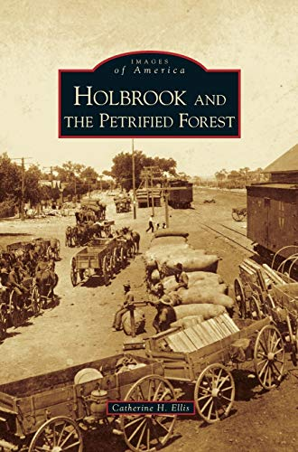 9781531630270: Holbrook and the Petrified Forest