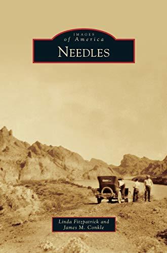 9781531653361: Needles