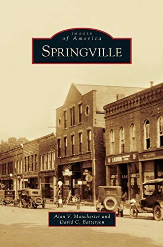 9781531661809: Springville
