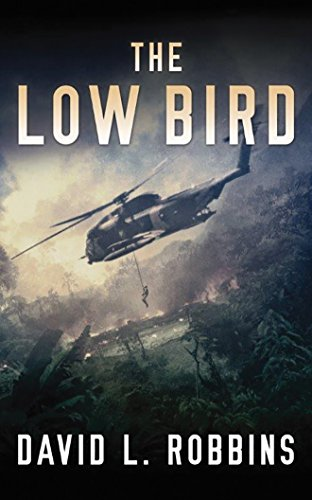 9781531866273: The Low Bird