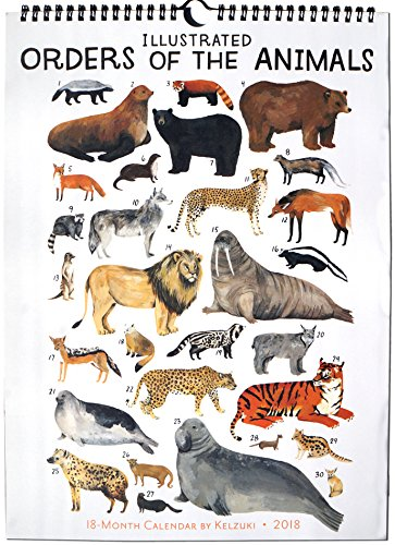 Illustrated Orders of the Animals 2018 Wall Calendar (Calendar)