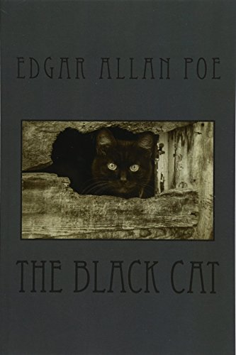 9781532874239: The Black Cat