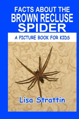 Facts About the Brown Recluse Spider