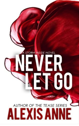 Never Let Go: A Storm Inside Novel (The Storm Inside) (Volume 4): Anne, Alexis
