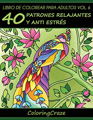 Libros Para Colorear Para Adultos Volumen 6: ColoringCraze
