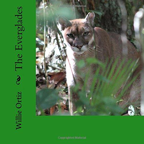 The Everglades: Mr Willie Ortiz