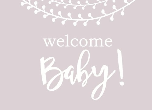 9781534854543 Welcome Baby Modern Baby Shower Guest Book With