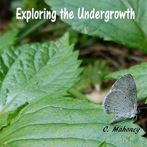 9781535047371: Exploring the Undergrowth: Hiking a Trail at the Great Dismal Swamp