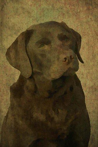 9781536983791: Chocolate Lab: Labrador Retriever: Journal/Notebook/Diary (Renaissance) (Volume 2)