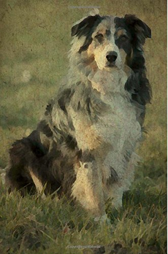9781537092997: Australian Shepherd: Renaissance Dogs: Journal/Notebook/Diary (Volume 19)