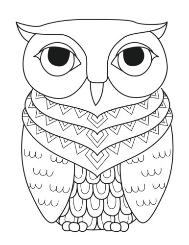 9781537443645: Blank Book Journal: Owl Zentangle Cover Diary Notebook: 8.5 x 11 size 120 gray lined pages! Color The Cover! (Color the Cover Journals) (Volume 9)