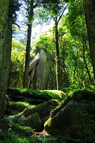 9781537521169: Shaded Forest of Sintra Portugal Journal: 150 page lined notebook/diary
