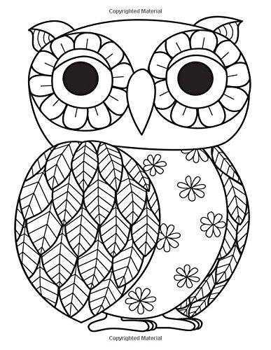 9781537580555: Daily Planner Journal: 365 + Days Bullet Journaling Blank Notebook with sections for date, time, notes, lists & doodles! 8.5 x 11 size, 380 pages, ... Owl (Color the Cover Planners) (Volume 8)
