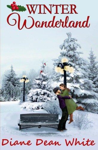 9781537607054: Winter Wonderland