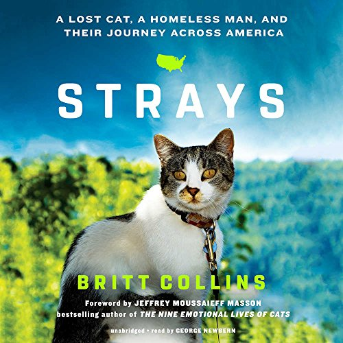 Strays: A Lost Cat, a Homeless Man, and Their Journey across America: Britt Collins