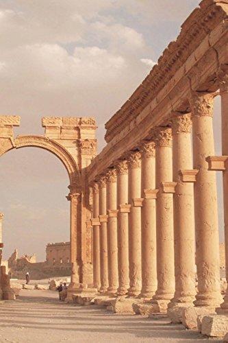 Ruins of Roman City Palmyra in Desert: Image, Cool