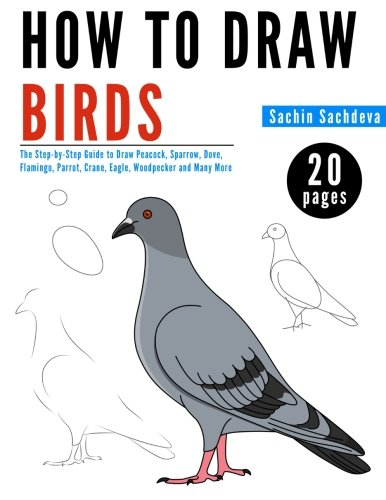 How to Draw Birds: The Step-by-Step Guide to Draw Peacock, Sparrow, Dove, Flamingo, Parrot, Crane, ...