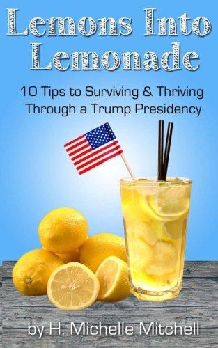 Lemons into Lemonade: 10 Tips to Surviving: Mitchell, H. Michelle