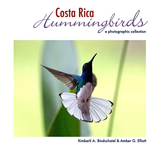 Costa Rica Hummingbirds: A Photographic Collection: Bindschatel, Kimberli A./