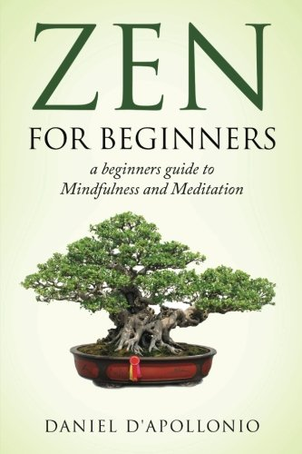 Zen: Zen For Beginners a beginners guide: D'apollonio, Daniel