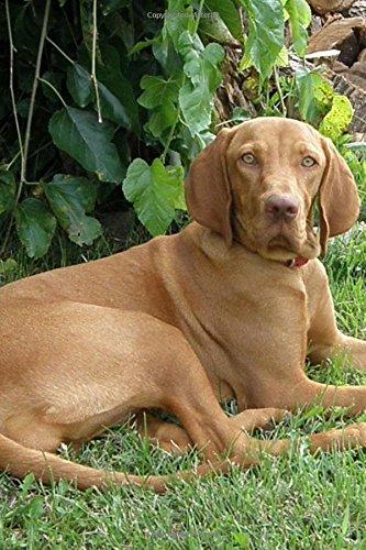 A Beautiful Hungarian Vizsla Dog Pet Journal: Ceations, Cs