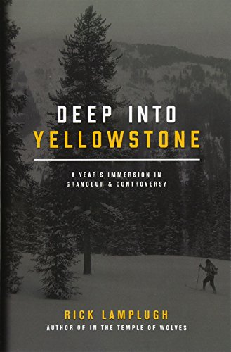 Deep Into Yellowstone: A Year's Immersion in Grandeur and Controversy