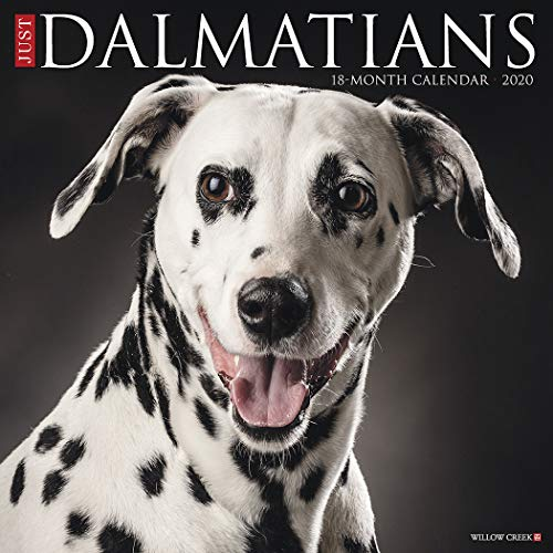 9781549206153: Just Dalmatians 2020 Wall Calendar (Dog Breed Calendar)