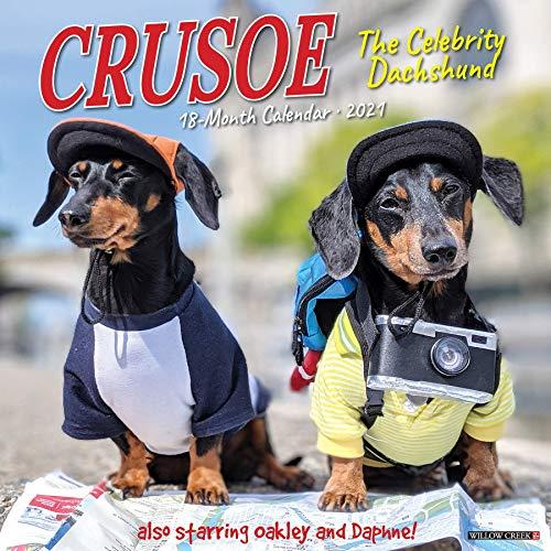 9781549211485: Crusoe the Celebrity Dachshund 2021 Calendar