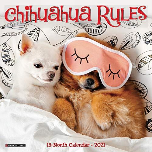 9781549214004: Chihuahua Rules 2021 Calendar
