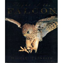 Flight of the Falcon: Tennesen, Michael