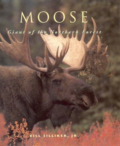 9781550139600: Moose: Giant Of The Northern Forest
