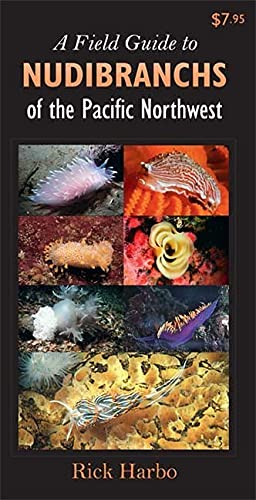 9781550174939: A Field Guide to Nudibranchs of the Pacific Northwest (Sea Life the Seashore)
