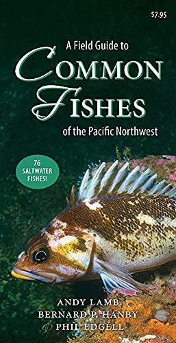 A Field Guide to Common Fish of the Pacific Northwest: Lamb, Andy; Hanby, Bernard; Edgell, Phil