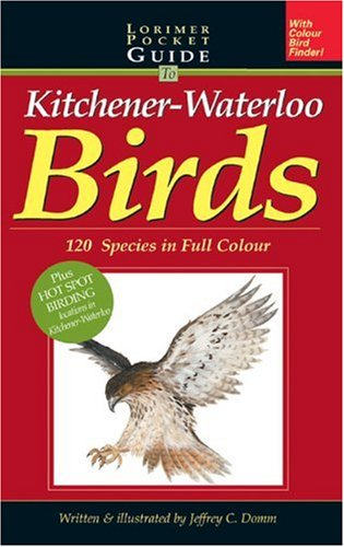 Lorimer Pocketguide to Kitchener-Waterloo Birds: 120 Species in Full Colour: Domm, Jeffrey C.