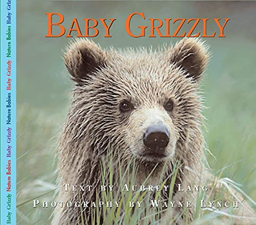 9781550415773: Baby Grizzly (Nature Babies)