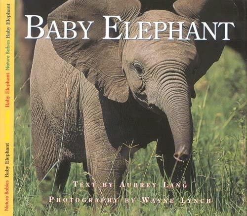 9781550417159: Baby Elephant (Nature Babies)