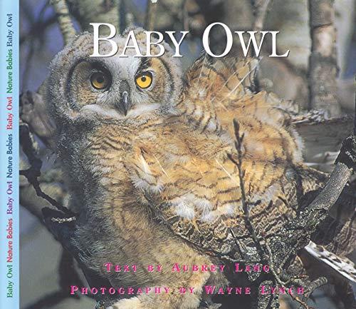 9781550417968: Baby Owl (Nature Babies)