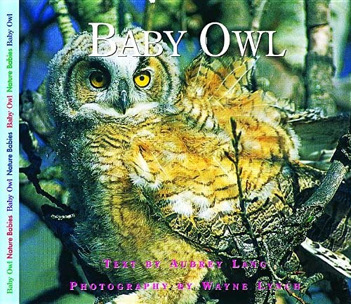9781550417982: Baby Owl (Nature Babies)