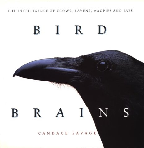 9781550545654: Bird Brains: Intelligence of Crows, Ravens, Magpies and Jays