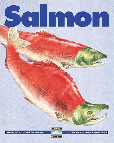 9781550749618: Salmon (Kids Can Press Wildlife Series)